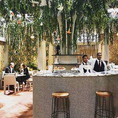 Тропическое блаженство с обоями #ColeandSon 🌴: VIP-зал в отеле в Дубаи. Благодаря Savuti 109/1006, Senzo Spot 109/6031 и Narina 109/10048 #interiordesign #обои #domoi24 #интерьер #дизайнквартиры #обоидлястен #обоидлядома #обоивинтерьере #обоивспальню #обоивдетскую #обоидлязала #обоивгостиную #дизайнерскиеобои #стильныеобои #wallpapers #design #interior #interiordecor #instadesign #decor #homedecor #interiors #wallcovering #designerwallpaper