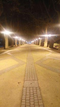 Avenida Velha, Ponte de Lima - Portugal.