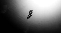 CJWHO ™ (William Trubridge - Freediver William Trubridge...)