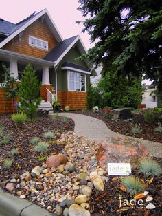 beautiful low maintenance front yard bark, rocks, bushes, trees. No lawn to mow
