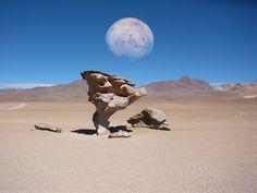 Te muestro paisajes de Bolivia, veni ponete el cinturon