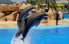 Marinepark Costa brava