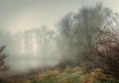 Diffused and Moist - Foggy morning at a pond near Prague