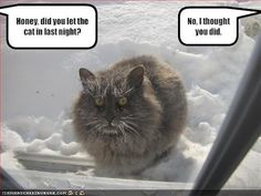 Funny Jokes - Google+