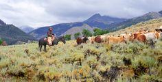 Wyoming Ranch