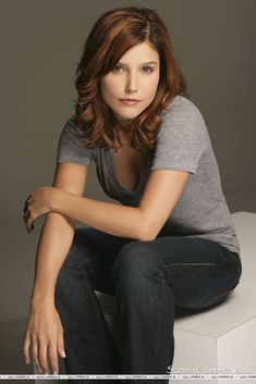 You Most likely know Sophia from Sophia Anna Bush (born July 8, 1982) is an American actress, director and spokesperson. Description from sahipali.bloguez.com. I searched for this on bing.com/images