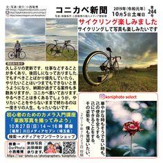コニカベ新聞第244号です。 サイクリングを楽しみました。 江の島周辺を半日かけて。写真撮影も所々で楽しみながら、またサイクリングを楽しみたいです。 The Selection, Movies, Movie Posters, Films, Film Poster, Cinema, Movie, Film, Movie Quotes