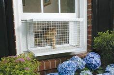 Amazon.com: PetSafe Cat Veranda: Pet Supplies