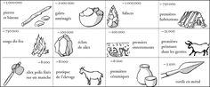 Évolution des outils et usages de l'homme préhistorique