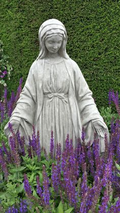 Virgin Mary statue surrounded by lavender. Found this at Roger's Garden, Newport Beach. Prayer Garden, Meditation Garden, Outdoor Statues, Garden Statues, Jungfrau Maria Statue, Marian Garden, Sacred Garden, Spiritual Garden, Virgin Mary Statue