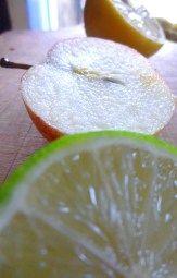 Celery, Apple & Citrus Juice   Juice Fast Day 1!   Lemon and Coconut   #juicing #juicefast #fruit #healthylife