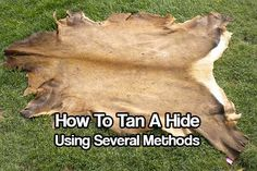 How To Tan A Hide Using Several Methods. There is more than one way to skin a cat, so they say! Same is for tanning a hide too. Check out these ways today.