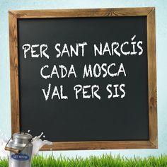 #Refranys #Català #LletNostra