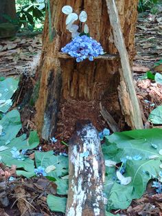 Fairy Castle with moat at Woodland Garden in Decatur