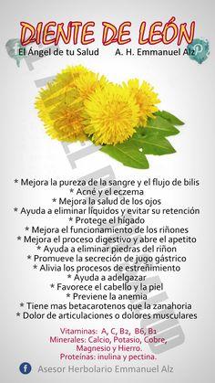 BENEFICIOS DEL DIENTE DE LEÓN  #PLANTASMEDICINALES  #EMMANUELALZ  ¿Sabías que el diente de león, a pesar de estar considerado como una mala hierba para los jardines, se le atribuyen numerosas propiedades medicinales?