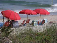 Sunny Day South Carolina Style