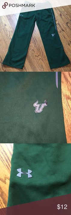 Under Armour USF Track Pants Under Armour University Of South Florida Bulls Logo fleece lined Track Pants. Loose fit size large. Good condition, zipper bottoms. Under Armour Pants Sweatpants & Joggers