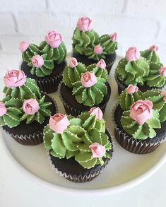 Oh my cupcakes! These are beautiful Oh my cupcakes! - Oh my cupcakes! These are beautiful Oh my cupcakes! These are beautiful Best Picture For cactus ja - Kaktus Cupcakes, Succulent Cupcakes, Cupcakes Flores, Garden Cupcakes, Cactus Cake, Cactus Cactus, Cactus Food, Cactus Vert, Indoor Cactus