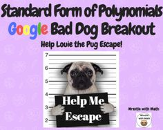 Standard Form of Polynomials – Bad Dog Breakout!
