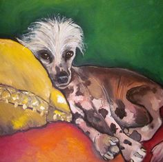 Dog on yellow pillow.  Chinese Crested Hairless by DarlingRomeo, $85.00