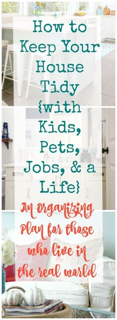 Real World Organizing: How to Keep Your House Tidy {with kids, pets, jobs, & a…