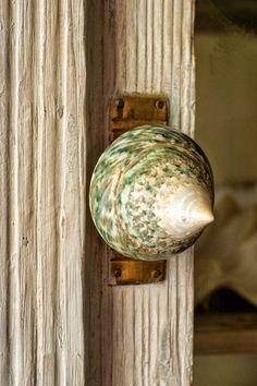 pin by lucinda nichols on shell knob pinterest knobs