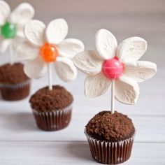 Lollipop + marshmallow flower cupcake toppers. Soo springy!