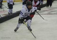 marcellhockey: Budapest '16 Ice Hockey Cup Hockey Cup, Ice Hockey, Budapest, Hockey