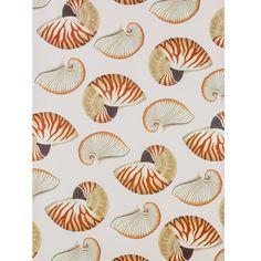 £2.50 Gift Wrap - 'Shells'