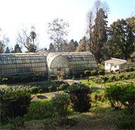 Lloyds Botanical Gardens