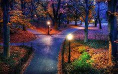 Picture-Perfect Fall Foliage #FallforNewYork