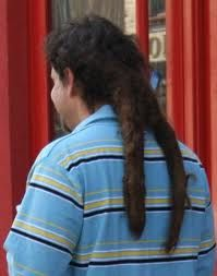 wishbone mullet...dude, that looks like two really long turds