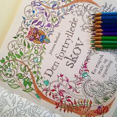 Ny hobby  Mit største juleønske blev opfyldt i går!  Min søde veninde @linnealautrup gav mig denne fine malebog! ❤ Og jeg er allerede i fuld gang med at farvelægge  Er der andre, som tegner og kender til disse alt for lækre malebøger??