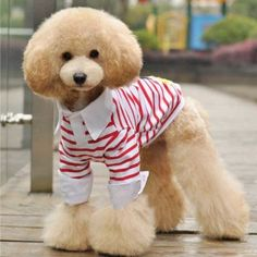 2013 pet pure and fresh and stripe clothes dog by kelifastner, $12.00