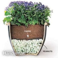 Tips for Moving Heavy Potted Plants | The Family Handyman
