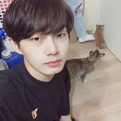 Похожее изображение Taking Care Of Kittens, Kim Yongguk, Ill Never Forget You, Born In China, Kwon Hyunbin, Produce 101 Season 2, Cool Cafe, Dream Boy, Hyun Bin