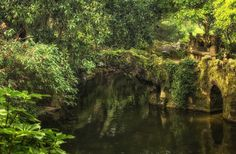 The Palace Of Mystery: My Pictures Of Quinta Da Regaleira by Taylor Moore at Sintra, Portugal  Regaleira Pond