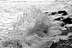 Photograph - Rogue Wave by Barbara S Nickerson