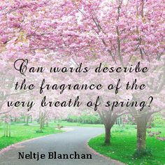 9 Best Springtime Images Spring Quotes Springtime Quotes Hello