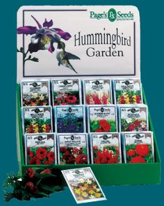 1000 Images About Hummer Love On Pinterest Hummingbird Garden Hummingbirds And Hummingbird