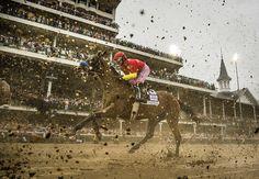 Abel Tasman wins a sloppy Kentucky Oaks. Abel Tasman, Action Photography, Olympic Sports, We Run, In The Flesh, Banksy, Horse Racing, Animal Kingdom, 21st Century