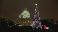 After a journey of more than 4,000 miles across land and sea, the 74 foot Capitol Christmas tree from Chugach National Forest was finally lit at a special ceremony in Washington DC.