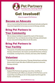 Get Involved: Ways to Support Pet Partners | We promote the healing power of the human-animal bond. By getting involved, you're helping us touch the lives of people in need. Discover the ways to support Pet Partners: You can give the gift of your time by becoming a therapy animal team with your pet. You can make a tribute/memorial gift or you can bring Pet Partners to your community or facility. You can even help by becoming an advocate for the human-animal bond. Find out more at…