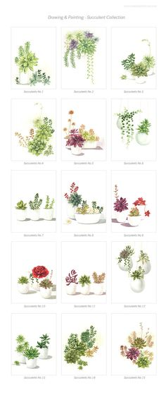 Succulent Watercolor Print Set Any TWO by TropicalGarden on Etsy
