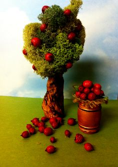Love these miniature trees!