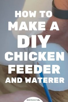 Keep Your Chickens Happy With Homemade Treats – Chicken In The Shadows Pvc Chicken Waterer, Chicken Water Feeder, Chicken Feeders, What Can Chickens Eat, Raising Meat Chickens, Best Chicken Coop, Chicken Runs, Chicken Coops, Homemade Chicken Feeder