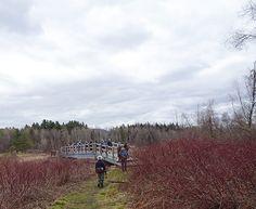Petit pont sur la rivière Missisquoi Crédit photo : MG Guiomar