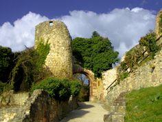 Rötteln Castle - Germany by Anthony Dezenzio on 500px