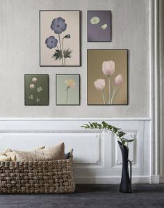 Fine botanical art prints - Botanical posters from ViSSEVASSE Eco Friendly Paper, Heart Art, Botanical Art, Poster Wall, Paper Design, Gallery Wall, Art Prints, Wall Art, Frame