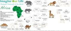 Animals-Landmarks-Africa-Pattern.jpg (1200×542)